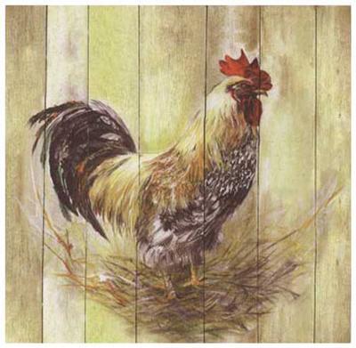 Coq-Clauva-Art Print