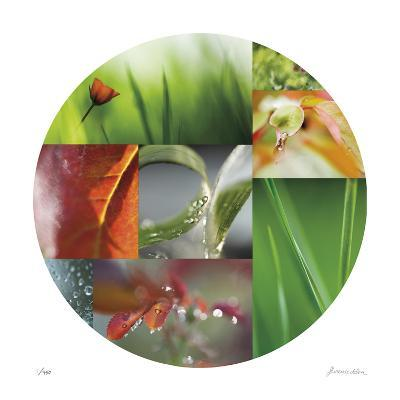 Coquelicot Circle-Florence Delva-Giclee Print