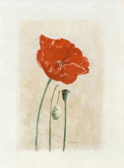 Coquelicot I-Laurence David-Art Print