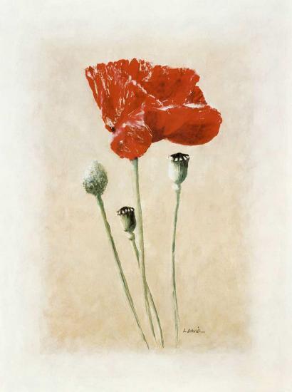 Coquelicot II-Laurence David-Art Print