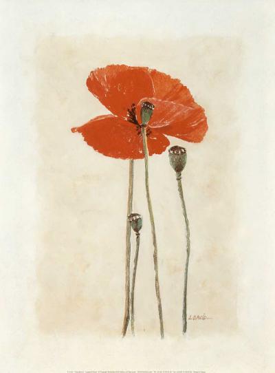 Coquelicot IV-Laurence David-Art Print