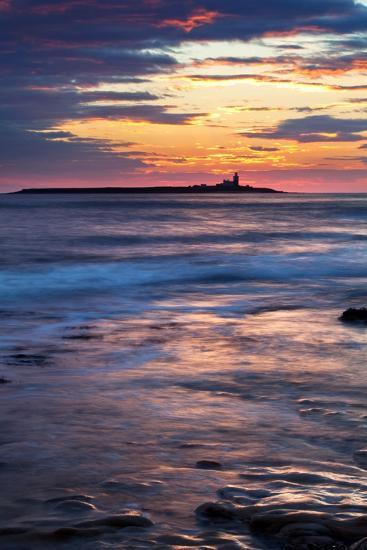 Coquet Island-Mark Sunderland-Photographic Print