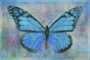 Blue Butterfly Watercolor by Cora Niele