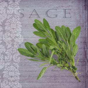 Classic Herbs Sage by Cora Niele