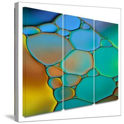 Connected II 3 piece gallery-wrapped canvas by Cora Niele
