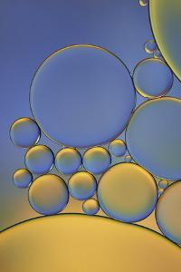 Orange and Purple Drops by Cora Niele