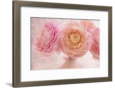 Pink Persian Buttercup Bouquet