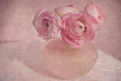 Pink Ranunculus Bouquet by Cora Niele