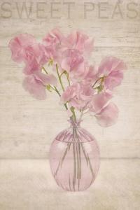 Pink Sweet Peas by Cora Niele