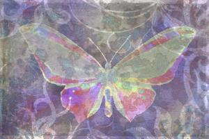 Purple Pink Butterfly Watercolor by Cora Niele
