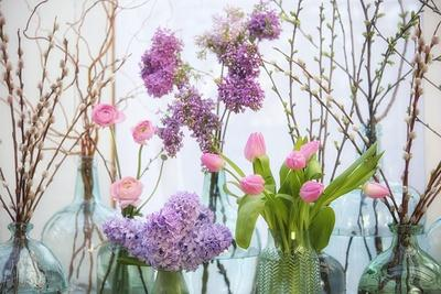 Spring Flowers in Glass Bottles VIII