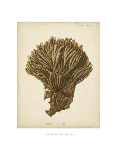 Coral Collection VI-Johann Esper-Art Print