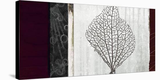 Coral I-Noah Li-Leger-Stretched Canvas Print