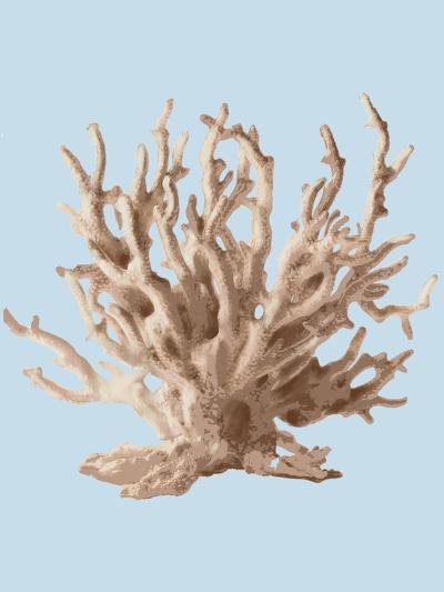 Coral II-Sloane Addison ?-Art Print