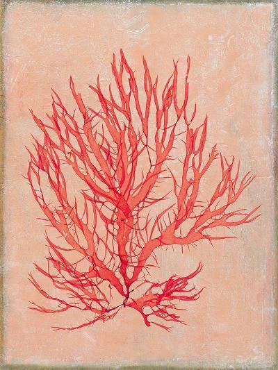 Coral Island II-Maria Mendez-Premium Giclee Print