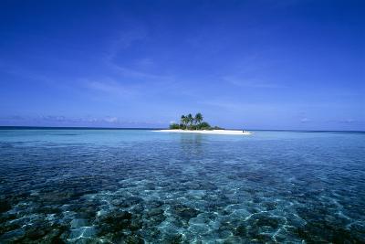 Coral Island-Alexis Rosenfeld-Photographic Print