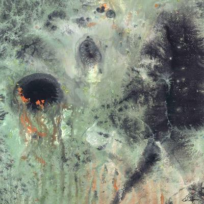 Coral & Jelly Fish II-Dlynn Roll-Art Print