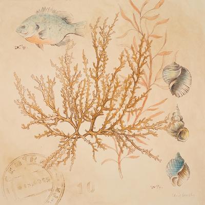 https://imgc.artprintimages.com/img/print/coral-medley-i_u-l-pxk12b0.jpg?p=0
