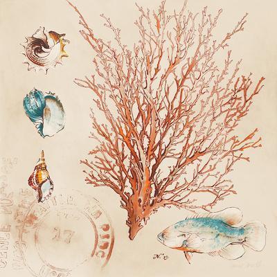 https://imgc.artprintimages.com/img/print/coral-medley-ii_u-l-f5o4o00.jpg?p=0