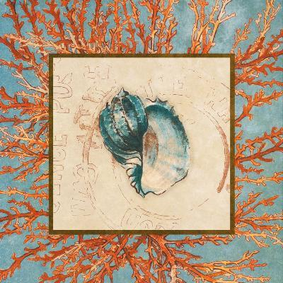 Coral Medley Shell II-Lanie Loreth-Art Print