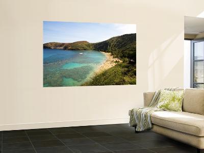 Coral Reef and Beach at Hanauma Bay-Sabrina Dalbesio-Wall Mural
