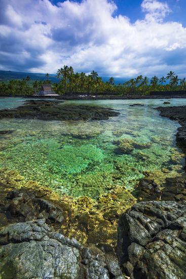 Coral Reef and Heixu, Pu'Uhonua O Honaunau National Historic Park, Kona Coast, Hawaii, Usa-Russ Bishop-Photographic Print