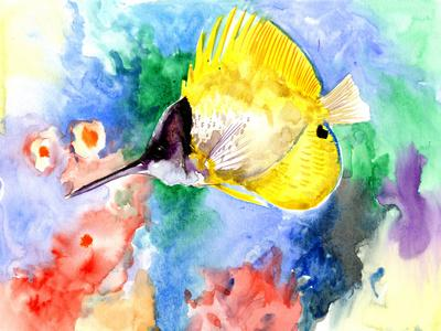 https://imgc.artprintimages.com/img/print/coral-reef-fish-3_u-l-f97bdv0.jpg?p=0