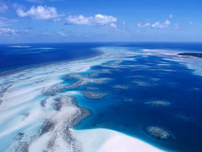 Coral Reef, Torres Strait Islands, Torres Strait Islands, Queensland, Australia-Oliver Strewe-Photographic Print