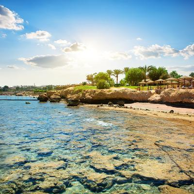 Coral Reefs on the Beach Near Hotel- Givaga-Photographic Print