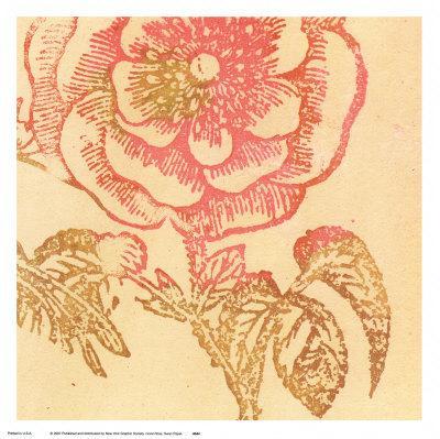 https://imgc.artprintimages.com/img/print/coral-rose_u-l-f1eklc0.jpg?p=0