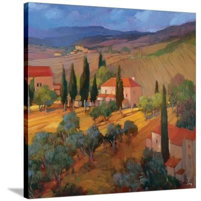 Coral Sunset Tuscany-Philip Craig-Stretched Canvas Print