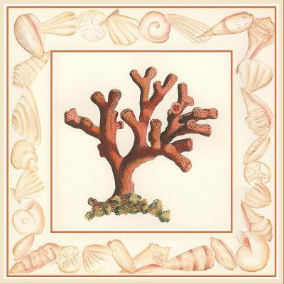 Coral with Shell Border I-Vision Studio-Art Print