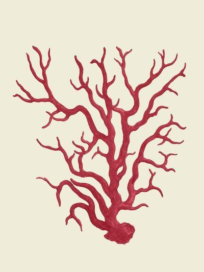 Corals Coral On Cream a-Fab Funky-Art Print