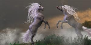 Unicorn Stallions Fighting by Corey Ford