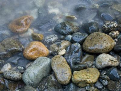 Rocks at edge of river, Eagle Falls, Snohomish County, Washington State, USA by Corey Hilz