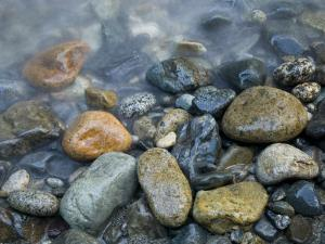 Rocks at edge of river, Eagle Falls, Snohomish County, Washington State, USA by Corey Hilz