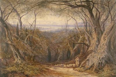 Corfu, 1871-Edward Lear-Giclee Print