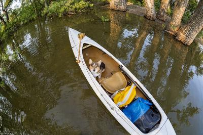 Corgi Dog in a Decked Expedition Canoe on a Lake in Colorado, a Distorted Wide Angle Fisheye Lens P-PixelsAway-Photographic Print