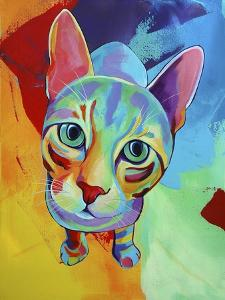 Ace Cat by Corina St. Martin
