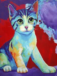 Colorful Kitten Finningan by Corina St. Martin