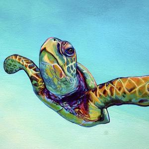Green Sea Turtle by Corina St. Martin