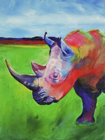 Painted Rhino by Corina St. Martin