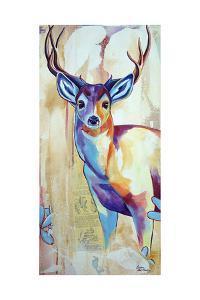White Tail Deer by Corina St. Martin
