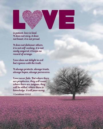 https://imgc.artprintimages.com/img/print/corinthians-13-4-8-love-is-patient-pink-field_u-l-f8r4me0.jpg?p=0