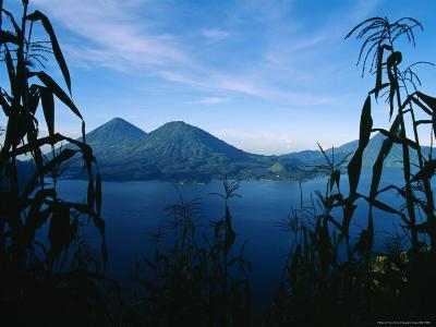 Corn Grows Around Lake Atitlan-Stephen Alvarez-Photographic Print