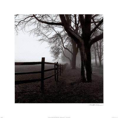 https://imgc.artprintimages.com/img/print/corner-fence_u-l-el55h0.jpg?p=0