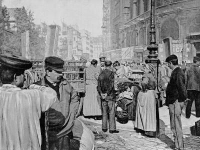 Corner of the Market Near the Church of Saint Eustache, Les Halles, Paris, 1896--Giclee Print