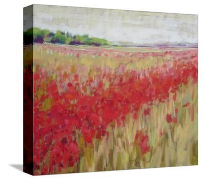 Cornfield--Stretched Canvas Print