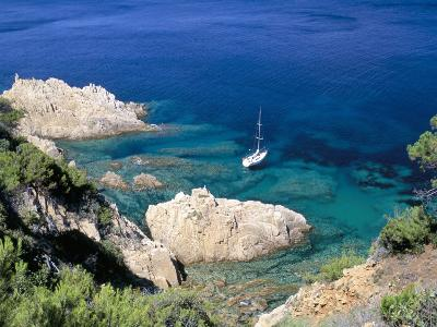 Corniche of Cap Camarat, Close to the Isle of Saint Tropez, Var, Provence-Bruno Barbier-Photographic Print