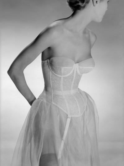 Corselet-Chaloner Woods-Photographic Print